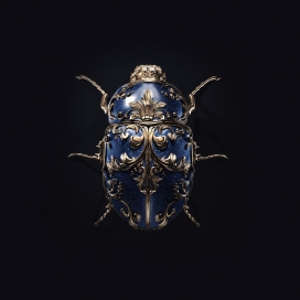 Jewel insects宝石昆虫